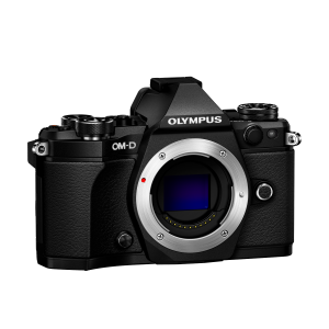 Фотоаппарат Olympus OM-D E-M5 Mark II Body черный (V207040BE000)